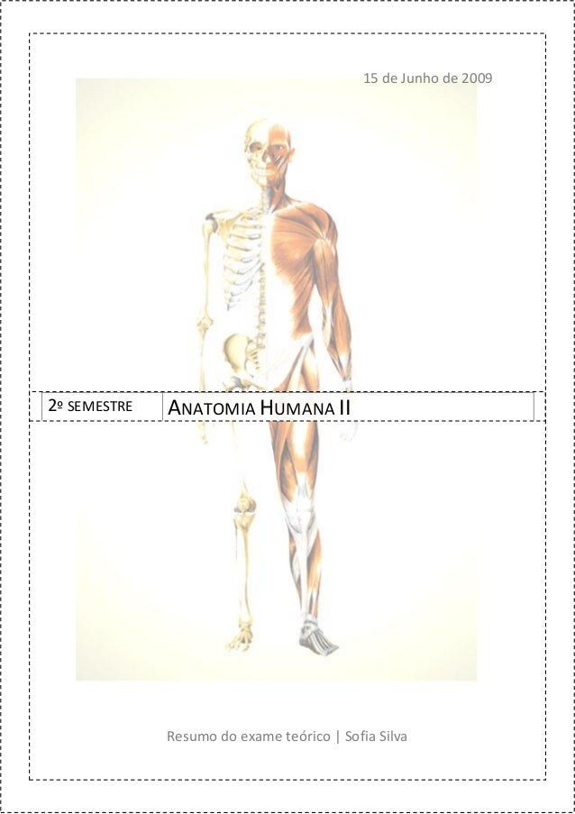 00   resumo para exame teórico(anatomia humana ii)