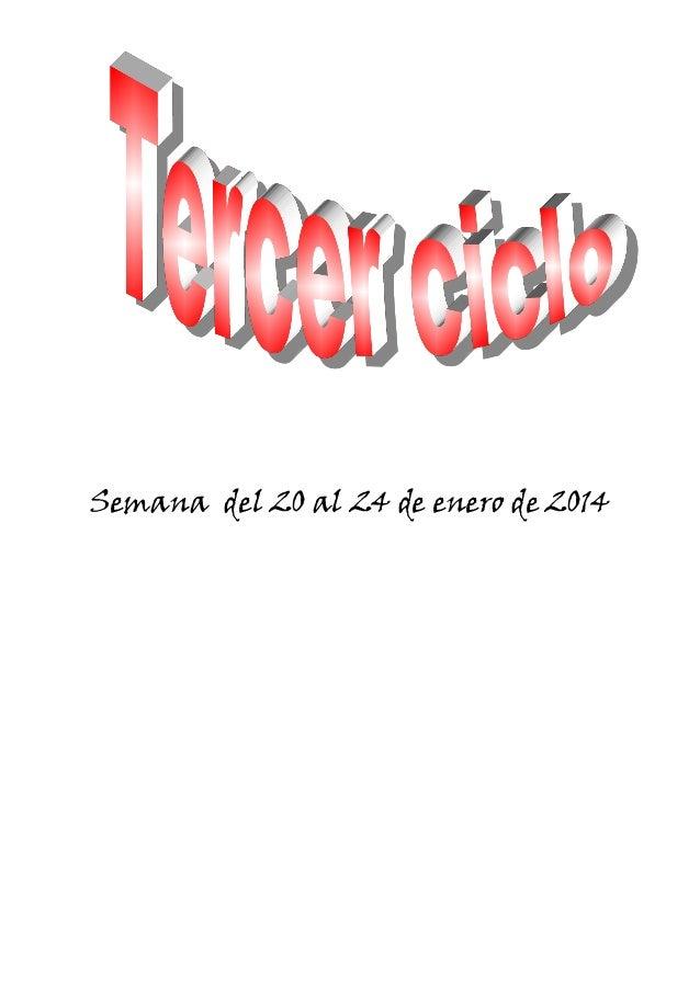 Semana del 20 al 24 de enero de 2014