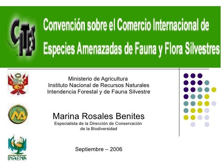 Ministerio de Agricultura  Instituto Nacional de Recursos Naturales Intendencia Forestal y de Fauna Silvestre Marina Rosal...