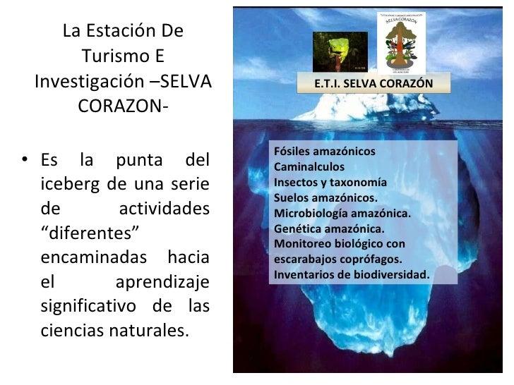 """La Estación De Turismo E Investigación –SELVA CORAZON- <ul><li>Es la punta del iceberg de una serie de actividades """"difere..."""