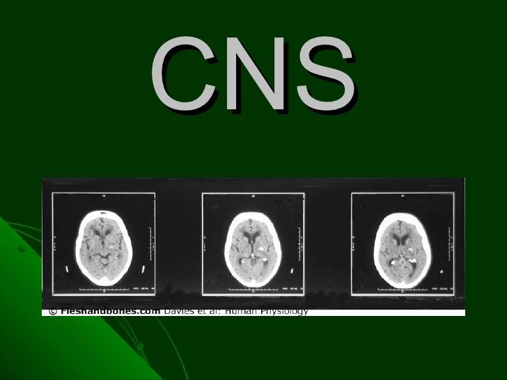 Centralni nervni sistem
