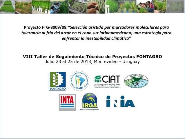 VIII Taller de Seguimiento Técnico de Proyectos FONTAGRO Julio 23 al 25 de 2013, Montevideo - Uruguay Proyecto FTG-8009/08...
