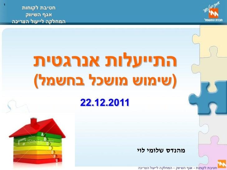 שלומי לוי - חברת החשמל