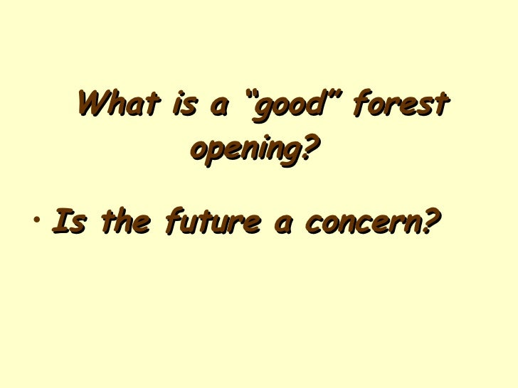 "What is a ""good"" forest opening?   <ul><li>Is the future a concern? </li></ul>"