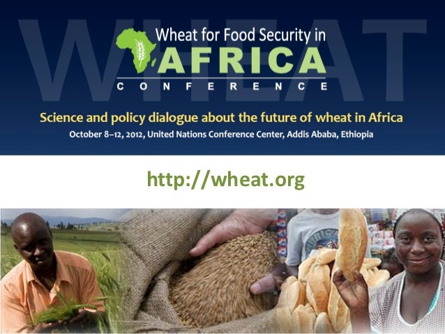 Ensuring food security under a changing climate & the potential of wheat in Africa: Perspectives from CIMMYT