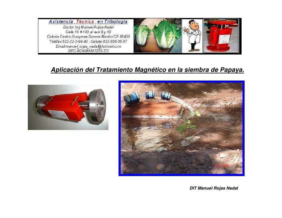 Aplicación del Tratamiento Magnético en la siembra de Papaya.                                                DIT Manuel Ro...
