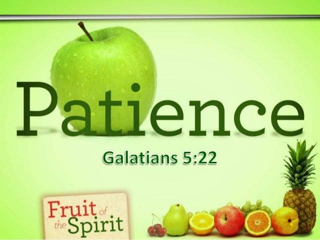FOTS - Patience