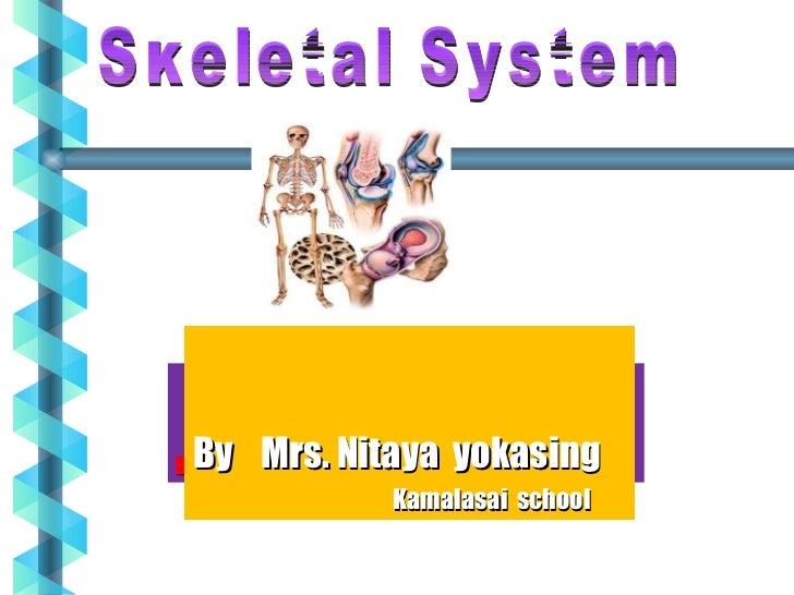 011 20 skeletal_20system
