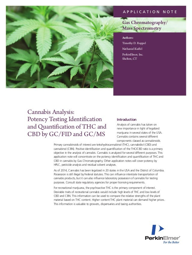 an analysis of the topic of the marijuana Marijuana, or cannabis, is the most commonly used illicit drug in the world   testicular cancer: a 2015 review and meta-analysis of three earlier studies found .