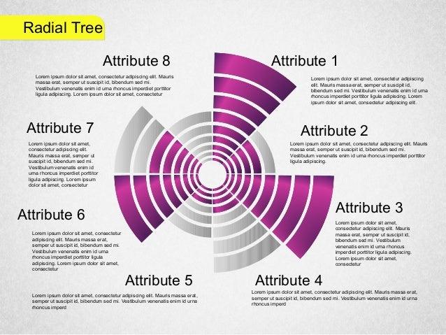 Radial Tree Attribute 1 Attribute 2 Attribute 3 Attribute 4Attribute 5 Attribute 6 Attribute 7 Attribute 8 Lorem ipsum dol...