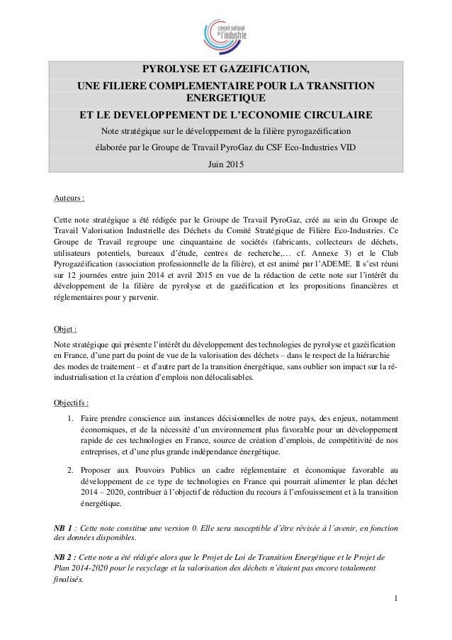 1 PYROLYSE ET GAZEIFICATION, UNE FILIERE COMPLEMENTAIRE POUR LA TRANSITION ENERGETIQUE ET LE DEVELOPPEMENT DE L'ECONOMIE C...