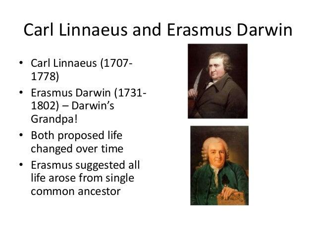 Erasmus Darwin linnaeus