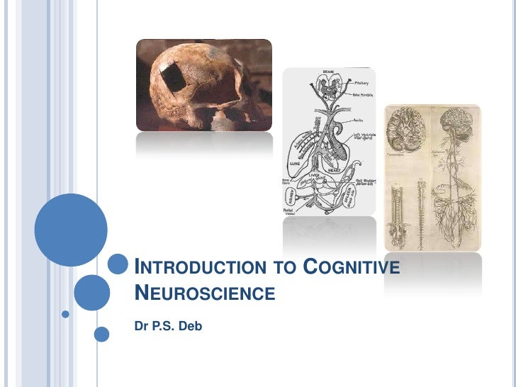 Cognitive neuroscience introduction 2011