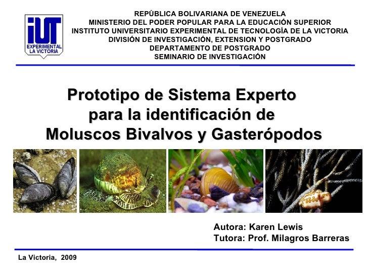 Prototipo de Sistema Experto  para la identificación de  Moluscos Bivalvos y Gasterópodos Autora: Karen Lewis Tutora: Prof...