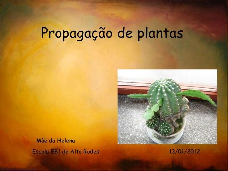 <ul>Propagação de plantas </ul><ul>Mãe da Helena </ul><ul>Escola EB1 de Alto Rodes  13/01/2012 </ul>