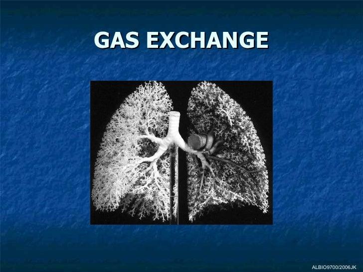 GAS EXCHANGE               ALBIO9700/2006JK