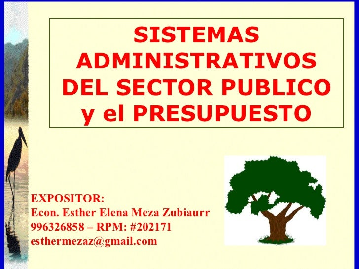 02 08. econ. esther meza zubiaurr[1]