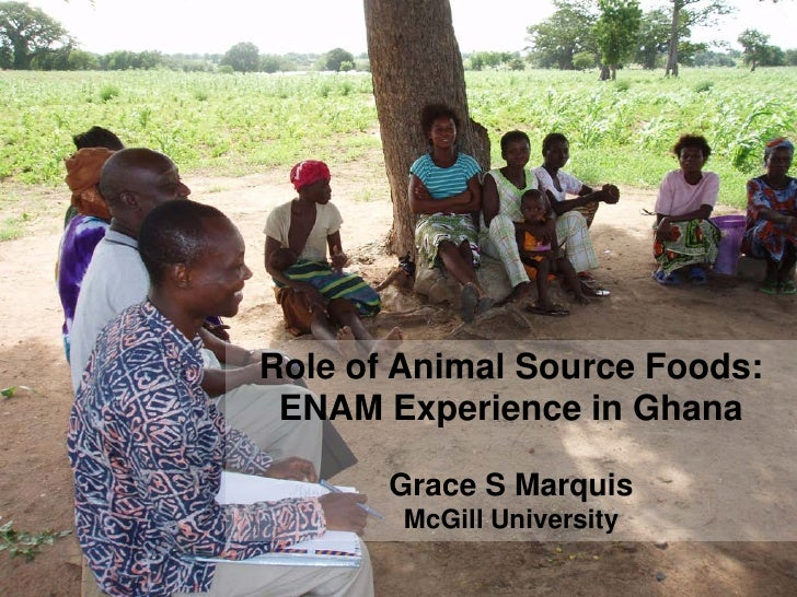 Role of Animal Source Foods: ENAM Experience in Ghana