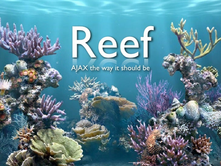 Reef: AJAX the way it should be