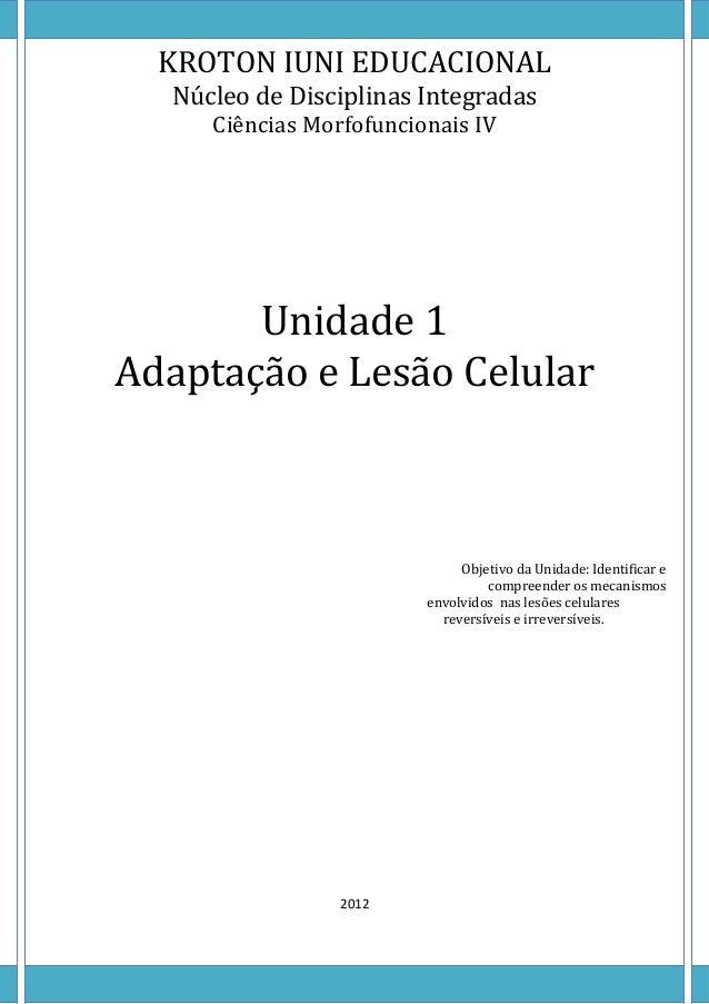 KROTON IUNI EDUCACIONAL  Núcleo de Disciplinas Integradas     Ciências Morfofuncionais IV       Unidade 1Adaptação e Lesão...