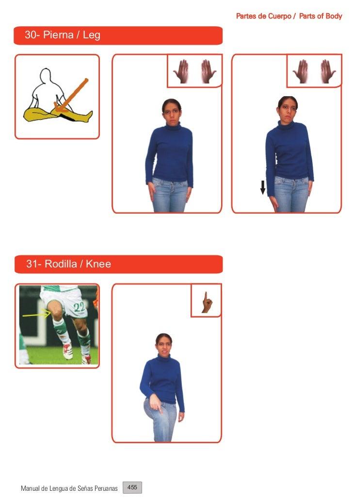 Partes de Cuerpo / Parts of Body 30- Pierna / Leg 31- Rodilla / KneeManual de Lengua de Señas Peruanas   455