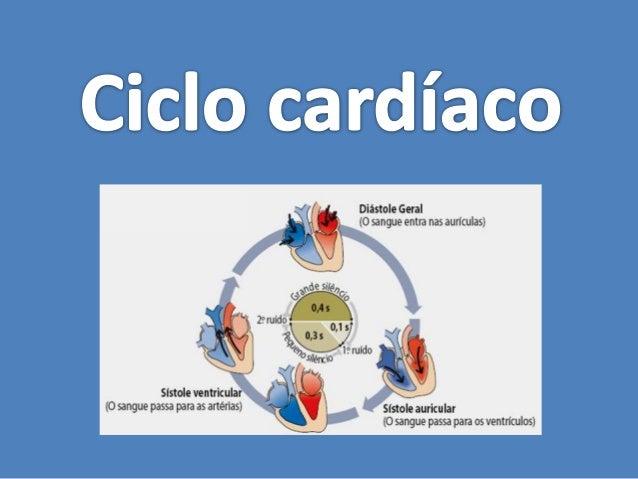 Para bombear o sangue, o coração contrai-se e relaxa de forma rítmica e involuntária:Ciclo cardíacoconstituído por: — duas...