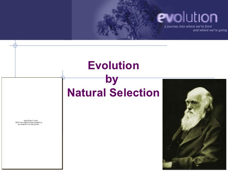 Evolution                                               by                                        Natural Selection       ...