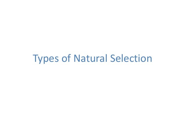 02c types of natural selection