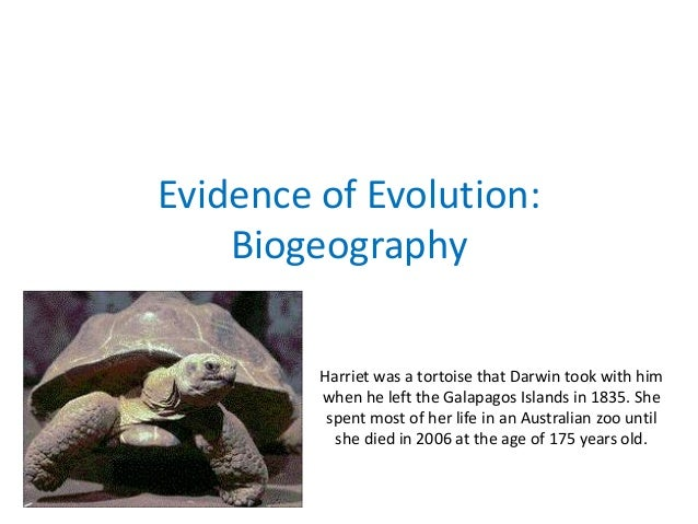 Evidence of Evolution: Biogeography Harriet was a tortoise that Darwin took with him when he left the Galapagos Islands in...