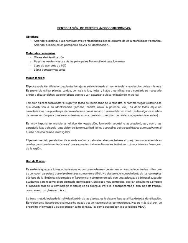 IDENTIFICACIÓN DE ESPECIES (MONOCOTILEDÓNEAS) Objetivos: · Aprender a distinguir taxonómicamente y enfocándolos desde el p...