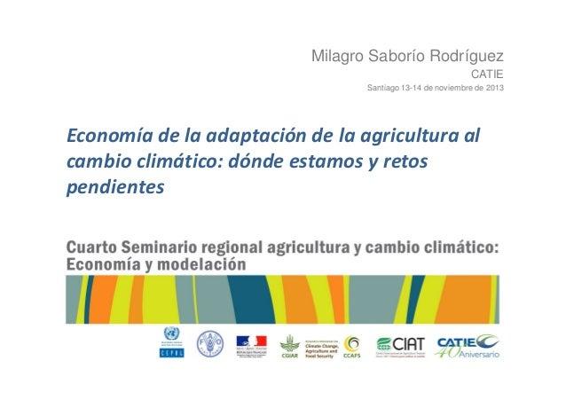 Milagro Saborío Rodríguez CATIE Santiago 13-14 de noviembre de 2013  Economía de la adaptación de la agricultura al cambio...