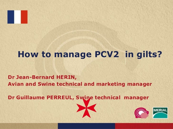 How to manage PCV2  in gilts? Dr Jean-Bernard HERIN,  Avian and Swine technical and marketing manager Dr Guillaume PERREUL...