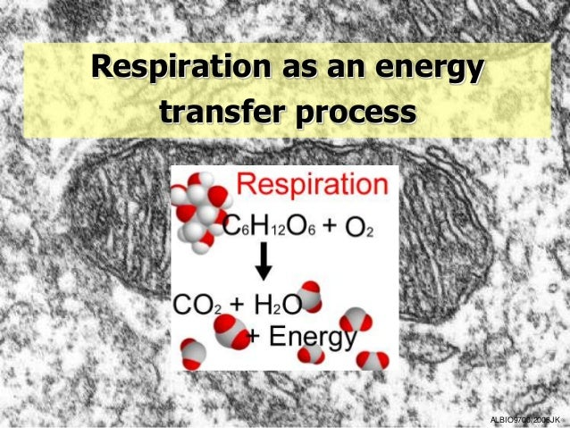 Respiration as an energy    transfer process                           ALBIO9700/2006JK