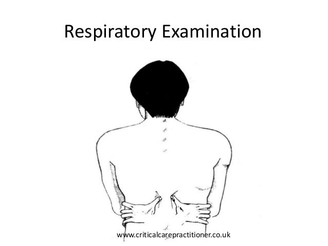 Image result for paediatric respiratory systems physical examination