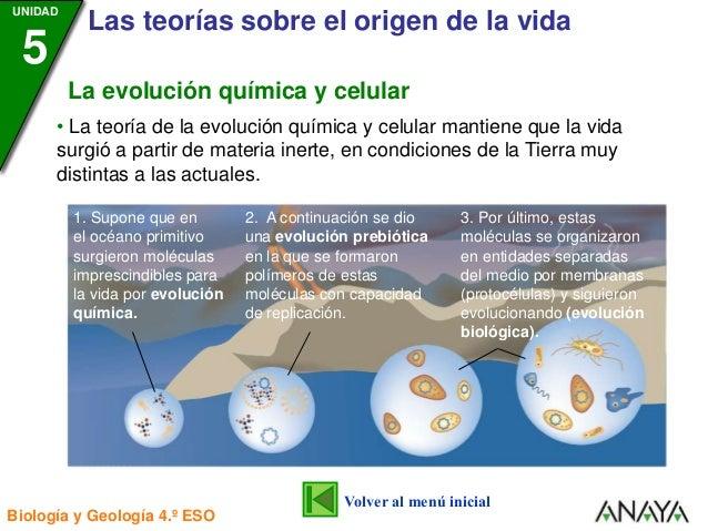 Evolucion Quimica y Celular de la Evolución Química y