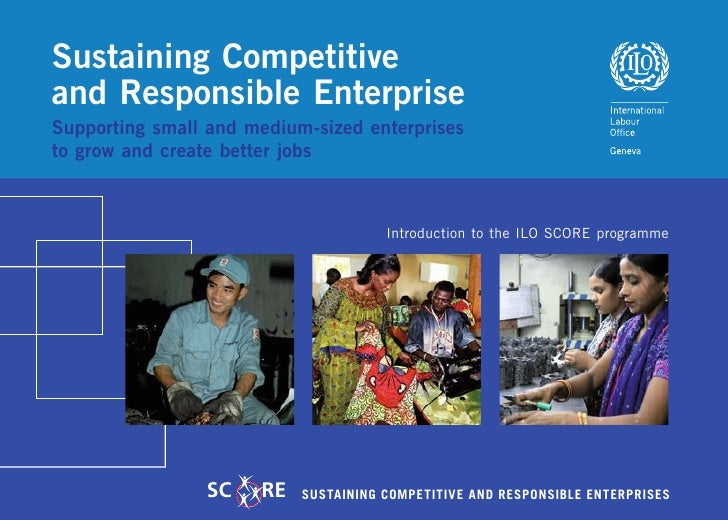 Sustaining Competitive and Responsible Enterprise Supporting small and medium-sized enterprises to grow and create better ...