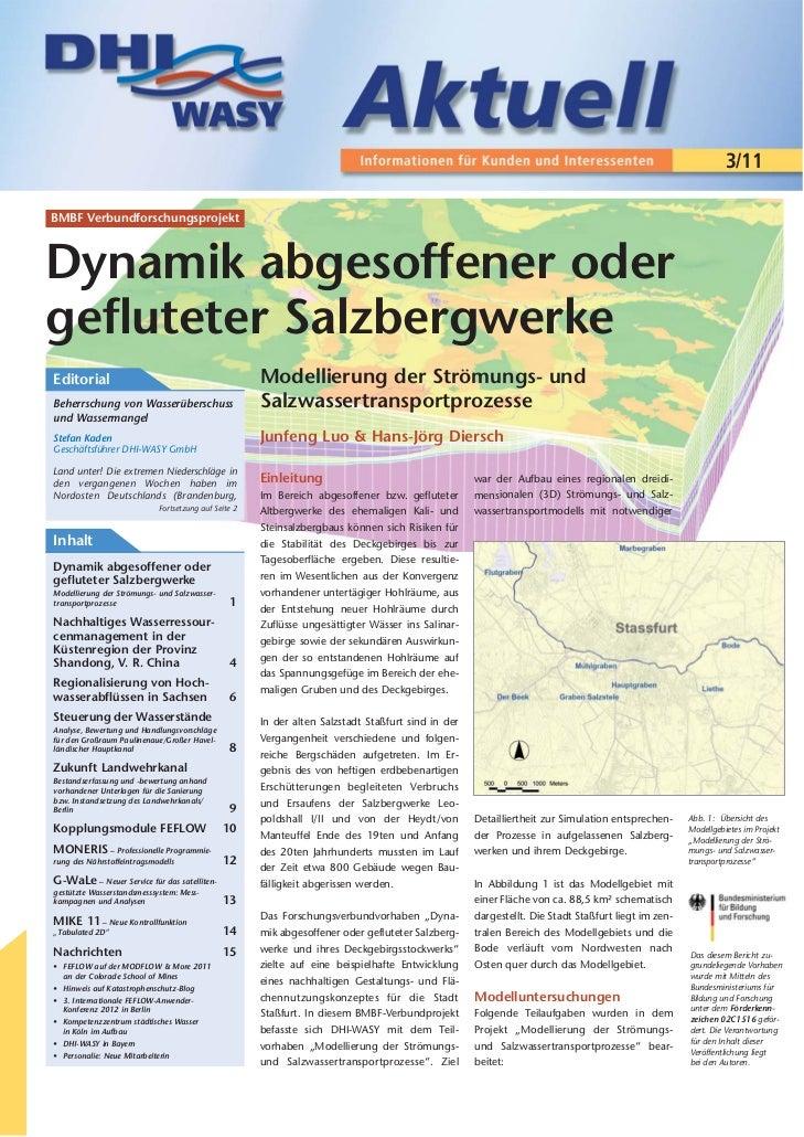 3/11BMBF VerbundforschungsprojektDynamik abgesoffener odergefluteter SalzbergwerkeEditorial                               ...