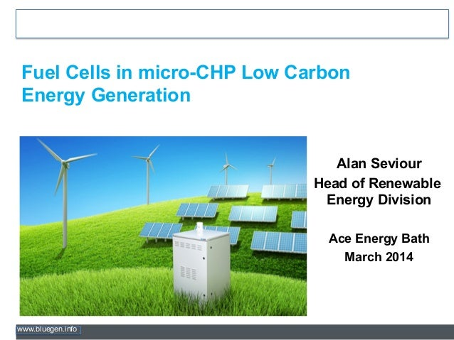 www.bluegen.info Fuel Cells in micro-CHP Low Carbon Energy Generation Alan Seviour Head of Renewable Energy Division Ace E...