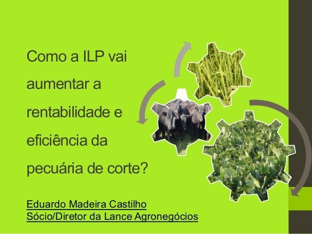 Como a ILP vai aumentar a rentabilidade e eficiência da pecuária de corte? Eduardo Madeira Castilho Sócio/Diretor da Lance...