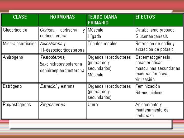 esteroidogenesis pdf