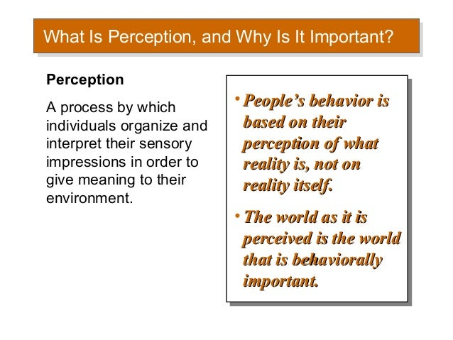 chapter 6 perception and individual decision making pdf
