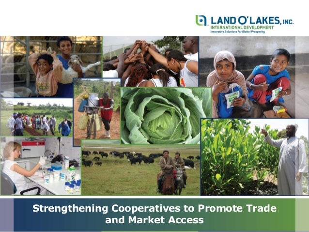 Mrs Mary Munene: Strengthening Cooperatives to promote Trade and Market Access