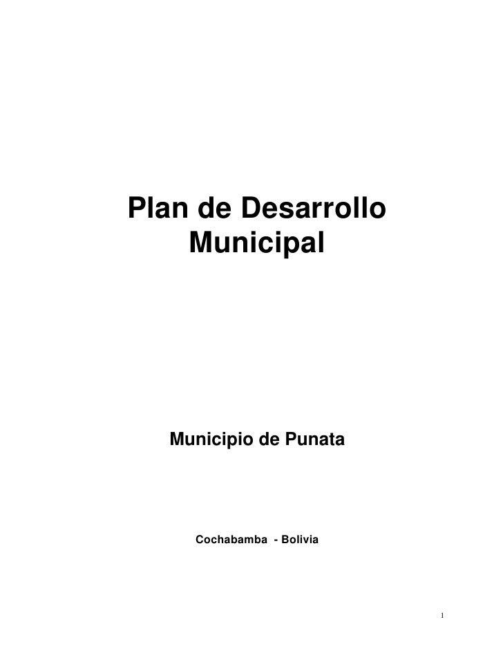 Plan de Desarrollo    Municipal  Municipio de Punata    Cochabamba - Bolivia                           1