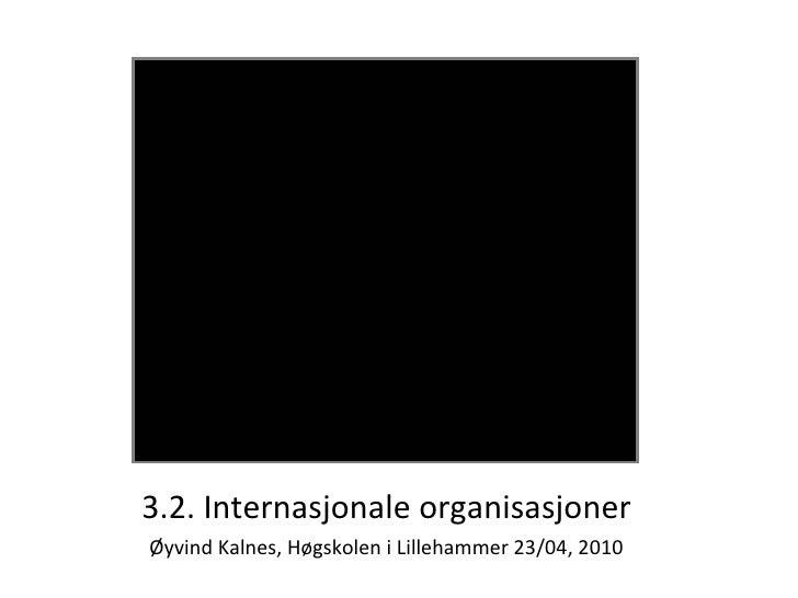 3.2  Internasjonal organisasjon