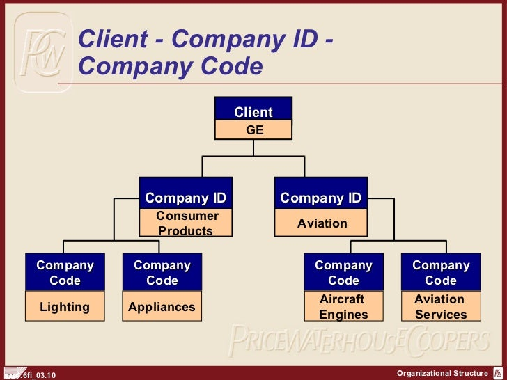 sap fi organization structure