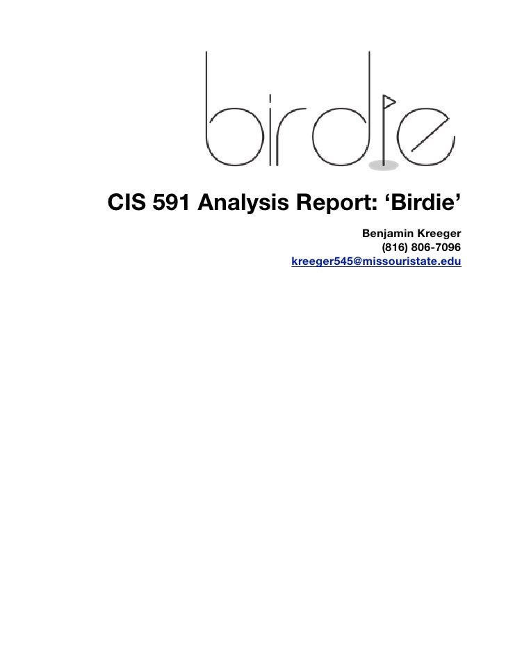 Birdie Analysis Report
