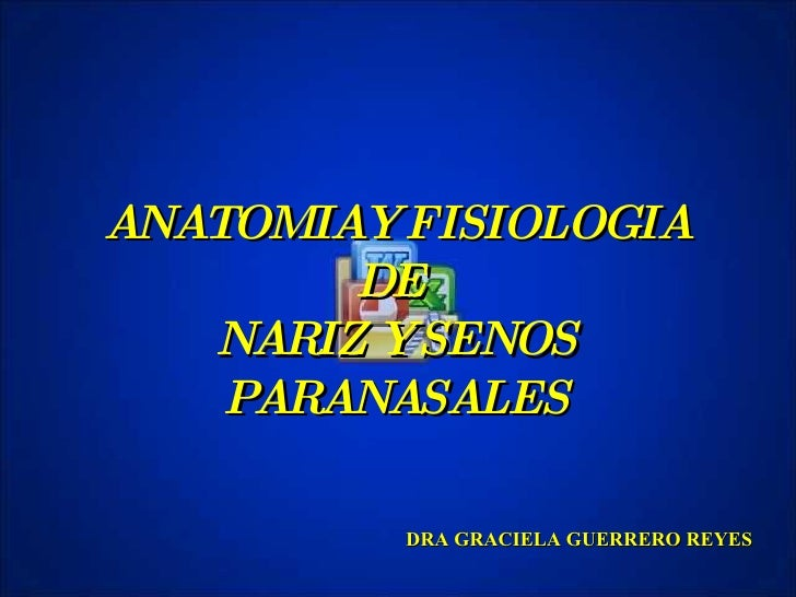 oto 03 Anato Nariz Senos (Fil Eminimizer)