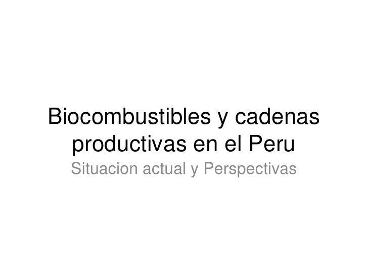 Biocombustibles y cadenas   productivas en el Peru   Situacion actual y Perspectivas