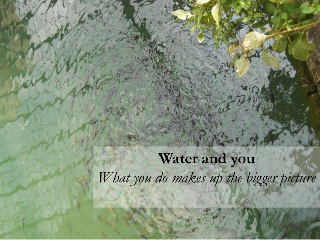 Water sustainability inside your home