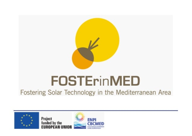 FOSTEr in MED strategic project